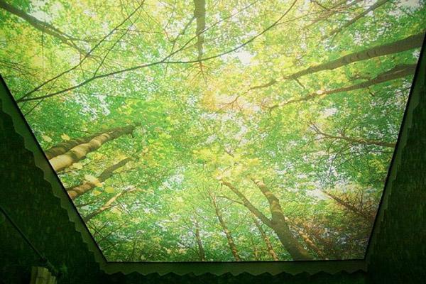 фото рисунков на потолочном плинтусе